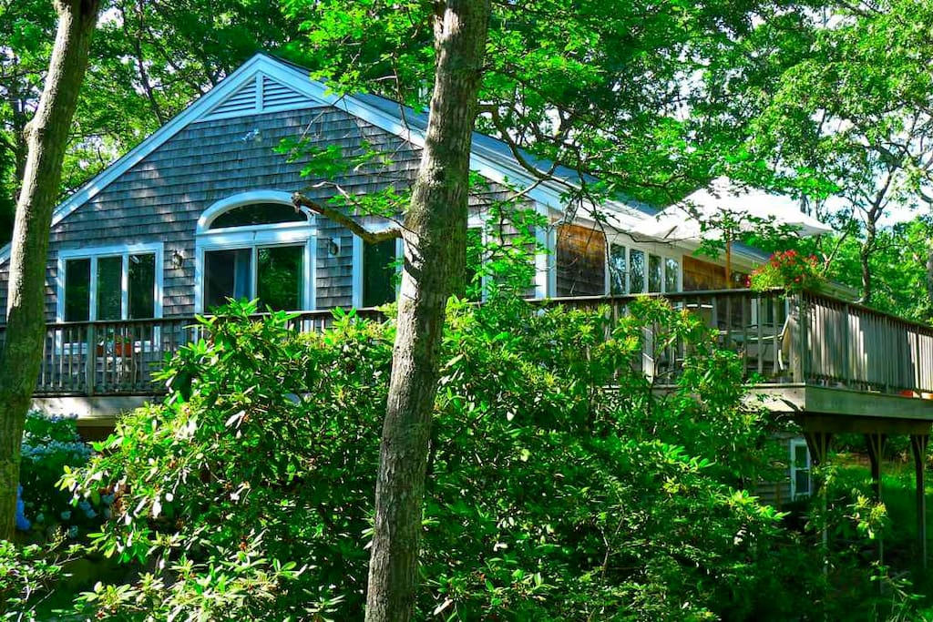 oak bluffs latin dating site Enjoy a half hour walk through the amazing weslyan grove methodist campgrounds and see the gingerbread cottages dating  in oak bluffs , this tour is sure.