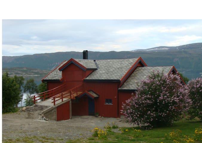 www.lokvik.com