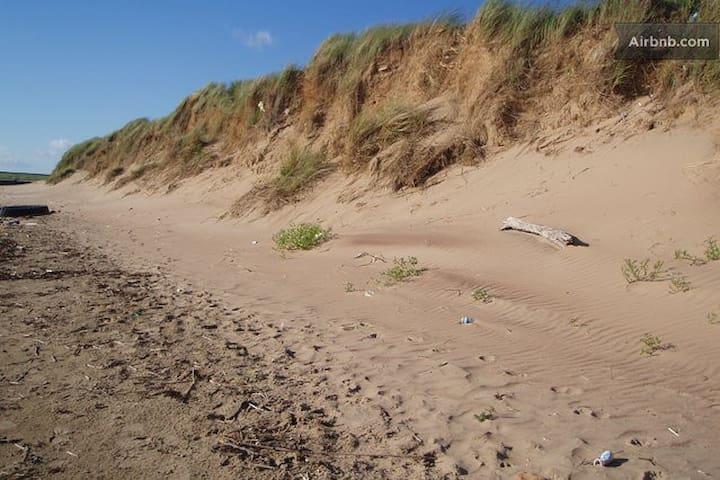 The local beach
