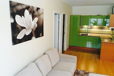 Warm apartment near to the airport - Peetri