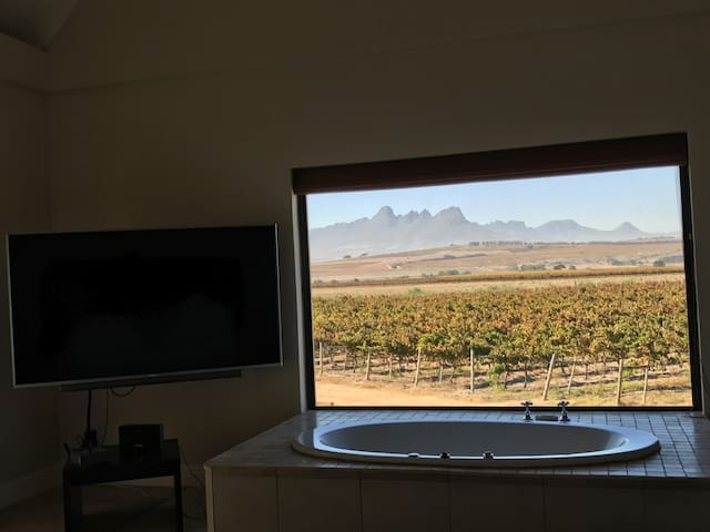 View from Main Bedroom with 70 inch TV & Bath