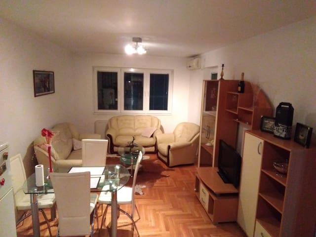 Entire appartment Center - Toplicina Str