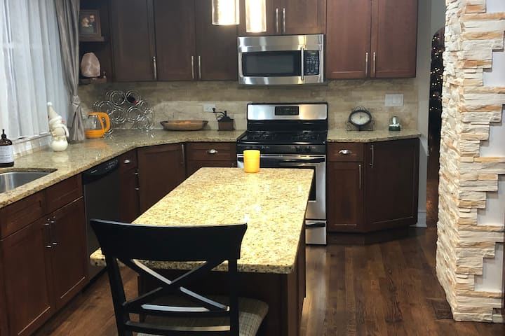 Newly Renovated APT 20 Mins from Downtown Chicago!