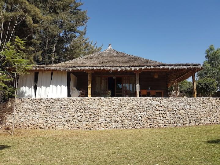 Maison en bois à la commune de sidi kaouki