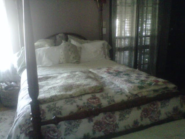 Room for rent/ Historic Home - Galveston - Bed & Breakfast