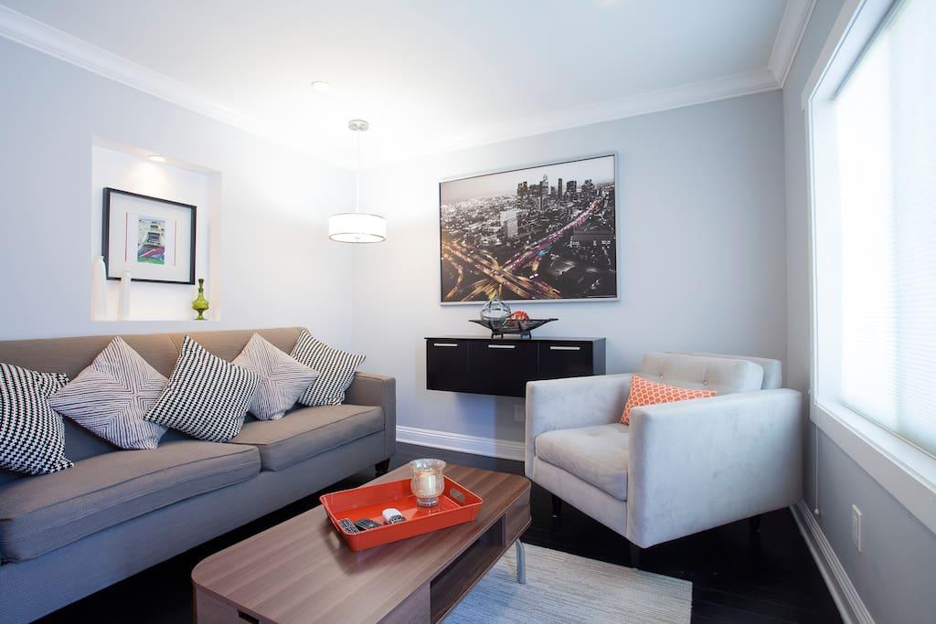 Large modern living room