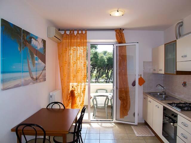 Appartamenti vicino al mare e terme - Riccione - Apartamento