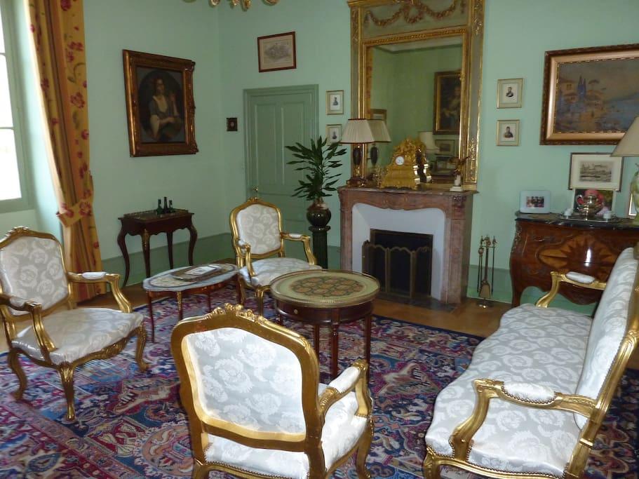Salon vert dans le style Louis XVI avec cheminée d'époque