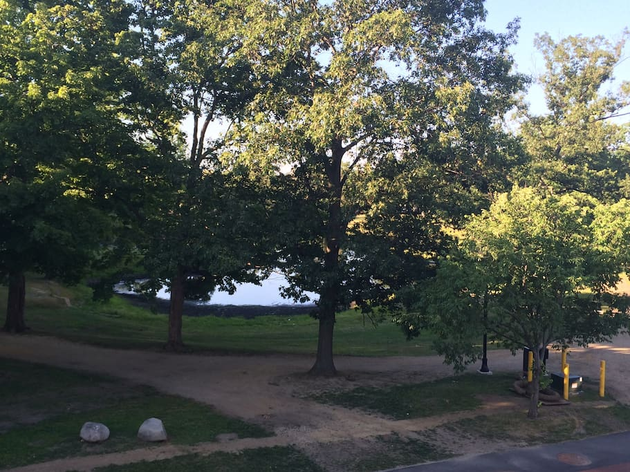 View of elm park from the front porch