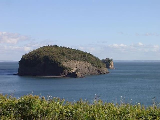 Blueberry Cottage on Bay of Fundy - Parrsboro - Chatka