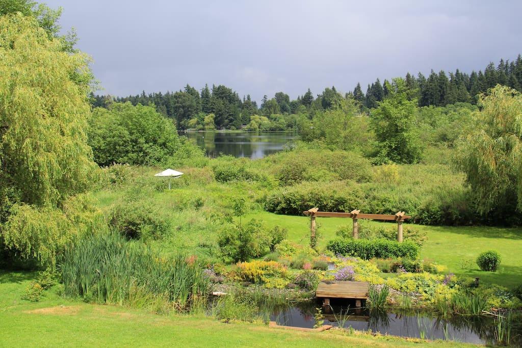 Back yard and Phantom Lake