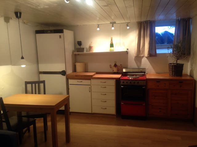 Cosy flat. Own entrance & kitchen. - Bekkestua - Apartment