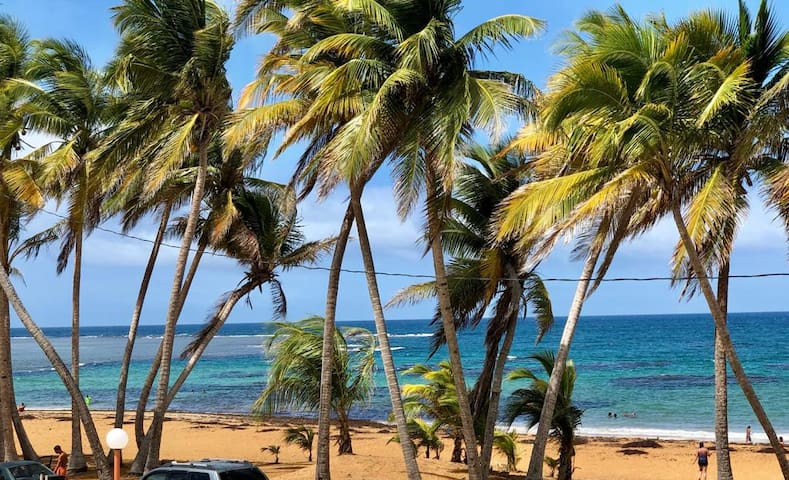 Tropical Beachfront Oceanview Apartment @Luquillo