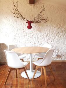 Sweet home in Southern France - Saint-Paul-de-Fenouillet