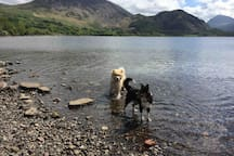 Ennerdale Water- walk from cottage.
