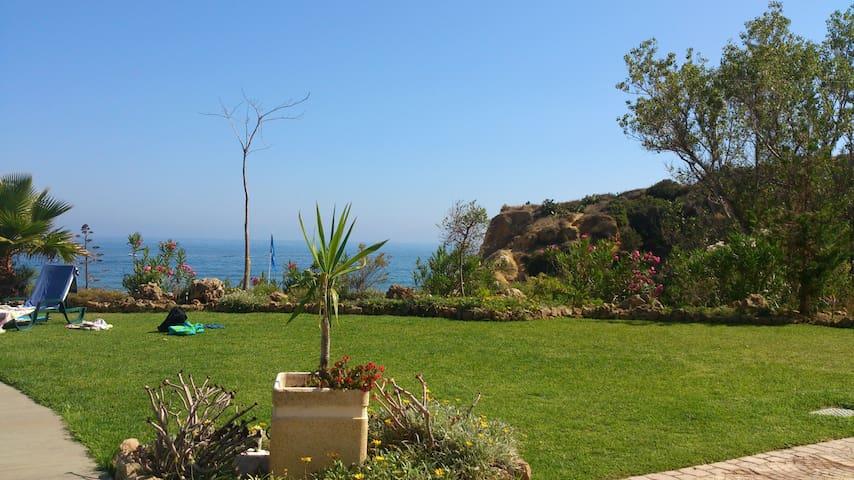 gardens facing the sea