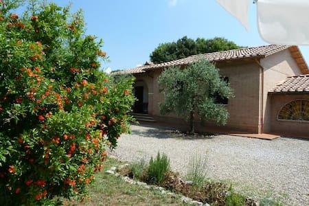Beautiful Villa with Swimming Pool - Santa Colomba