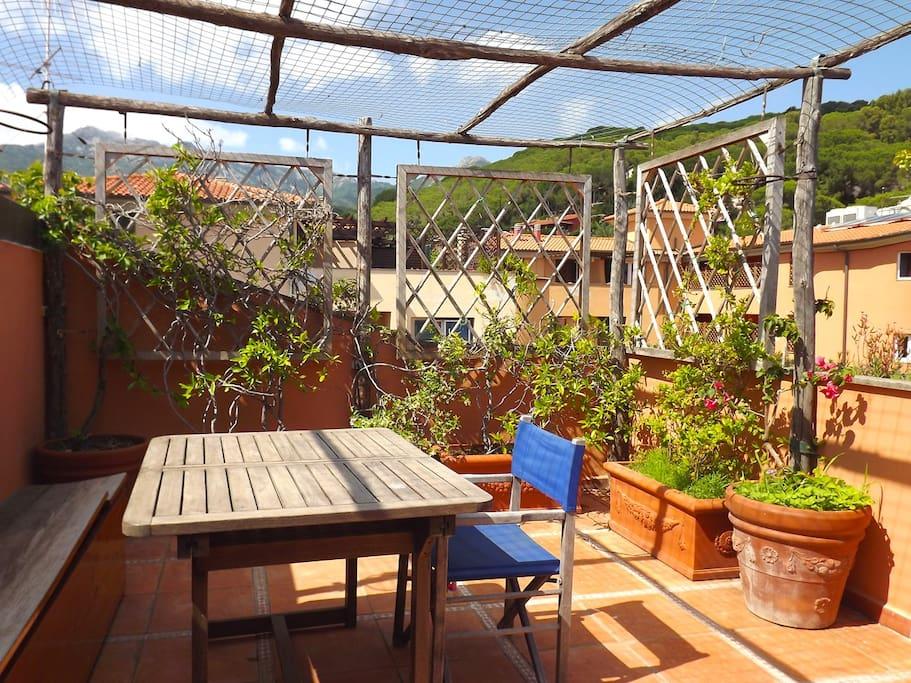 La terrazza sul retro, con il suo bel pergolato  decorato con piante mediterranee, con affaccio sulla vallata e la piazzetta condominiale