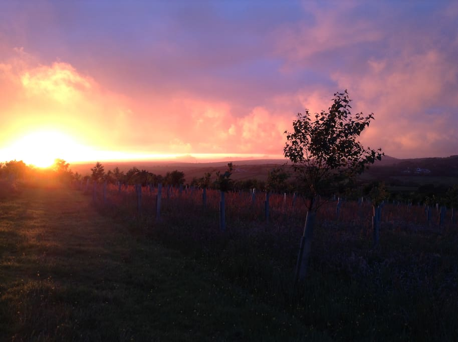 Stunning sunsets from our top field - you're welcome to explore and use the grounds during your stay - BBQ or  picnic or enjoy a campfire and watch the sun go down.