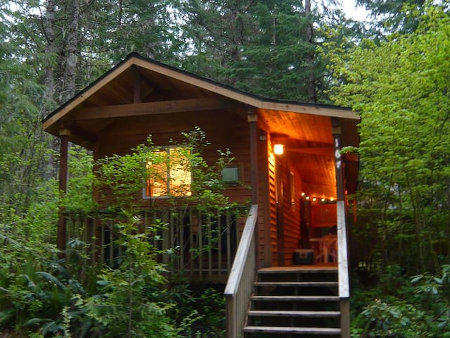 "Mountain Lily ""Tiny"" Cabin at Mt Rainier w/Hot Tub"