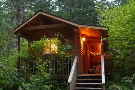 FireplaceLodging@Mt Rainier Mtn Lily Cabin~HotTub