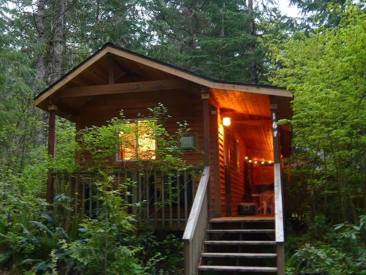 FireplaceLodging@Mt Rainier Mtn Lily Cabin~HotTub
