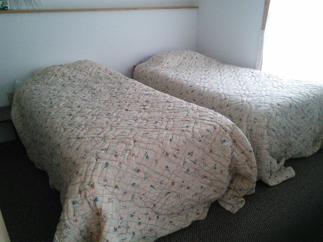 Two twin beds.