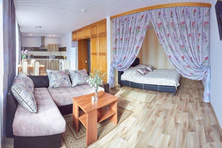 Апартаменты-студио на Войкова,23 - Polack - Apartment