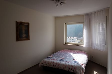 room - 100m to S-Bahn by Heidelberg - Neckarsteinach