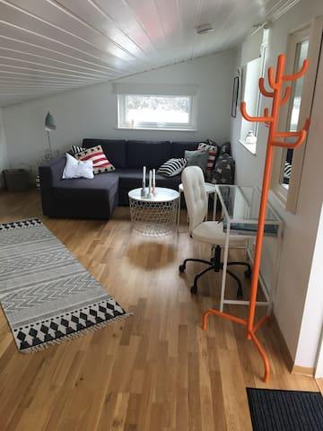 Studioleilighet midt på Langøy rett ved sjøen! - Fjell - Apartemen