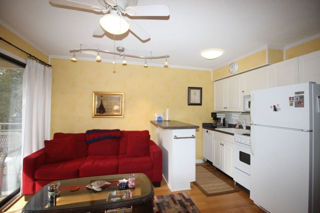 Couch,Furniture,Fridge,Refrigerator,Coffee Table