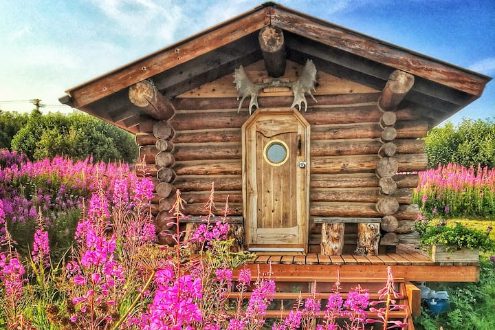 Homer's Highest Eagle & Condor Solar Log Cabin