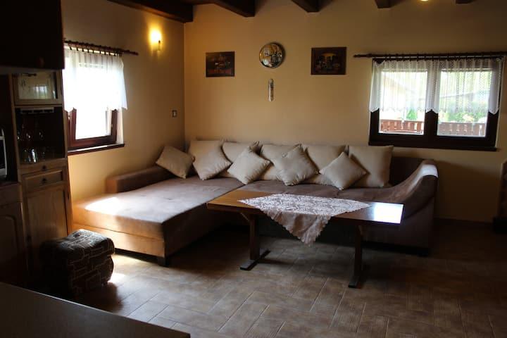 Chata ve Mlejně
