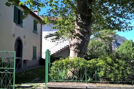 APT PROFUMO DI BOSCO - Traversa - 公寓