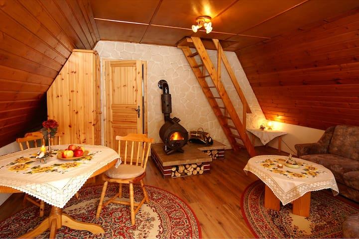 Wohnraum mit Sitz- und Eßecke