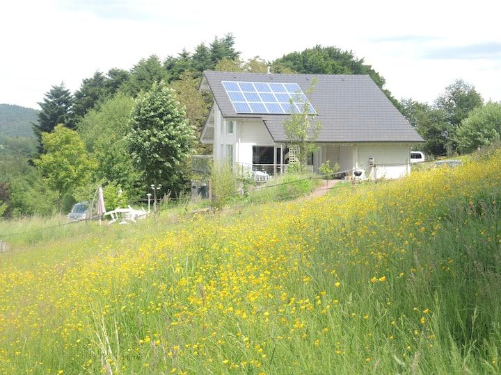 Gîtes ruraux (Varsberg, Carling, Metz..)261