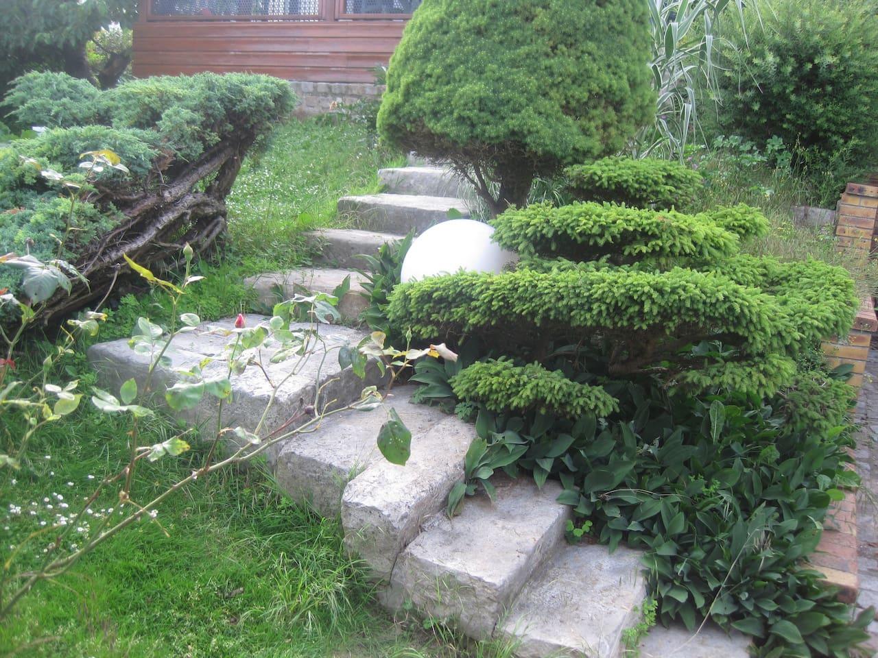 Escalier d'accès à la maison