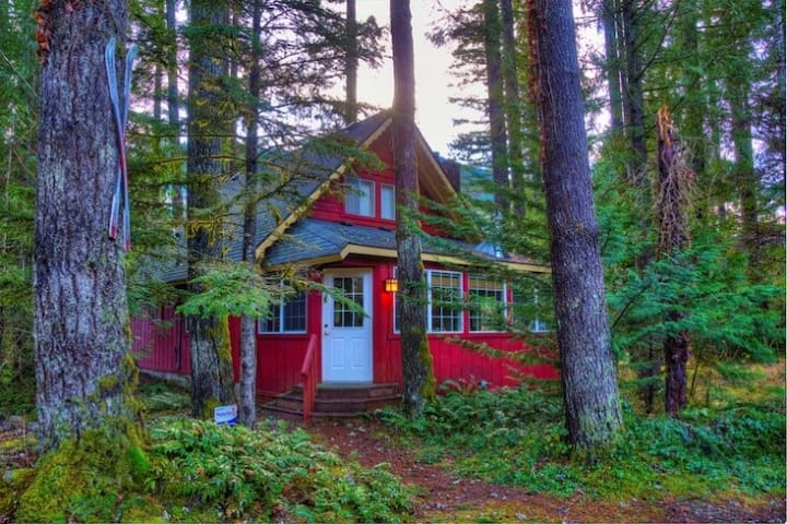Pet friendly cabin in the woods at Stevens Pass w/ hot tub, Wifi, spacious yard