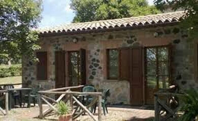 Tra le dolci colline dell'Umbria - orvieto - Bed & Breakfast