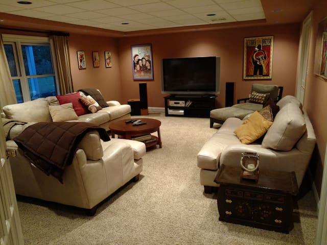 Basement Media Room