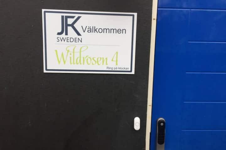 Wildrosen 4