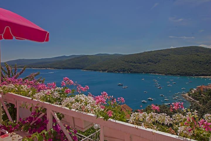 Charming app,gorgeous sea view,WiFi