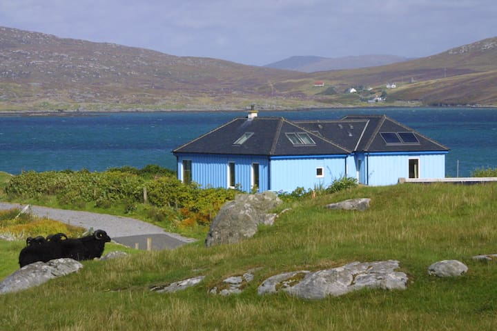 Carrick - The Blue House