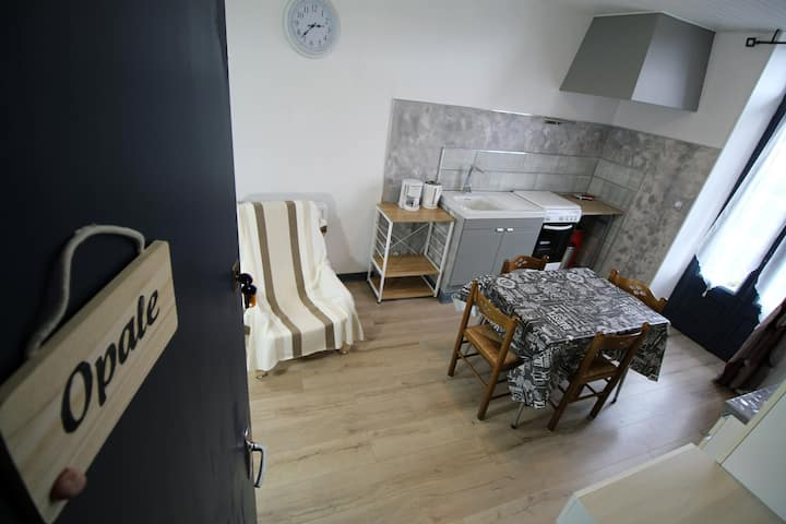 Studio 22m² proche centre: Parking+Jardin+WIFI
