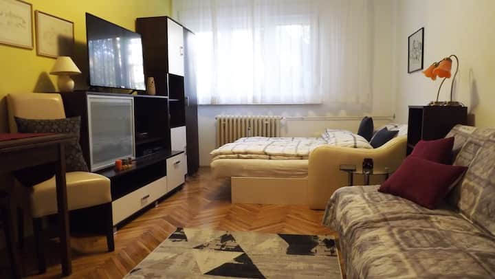Apartment Vijenac