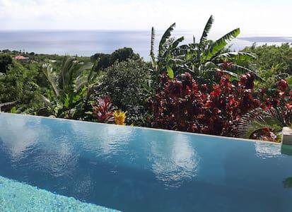 Kaye Mango St.Lucia