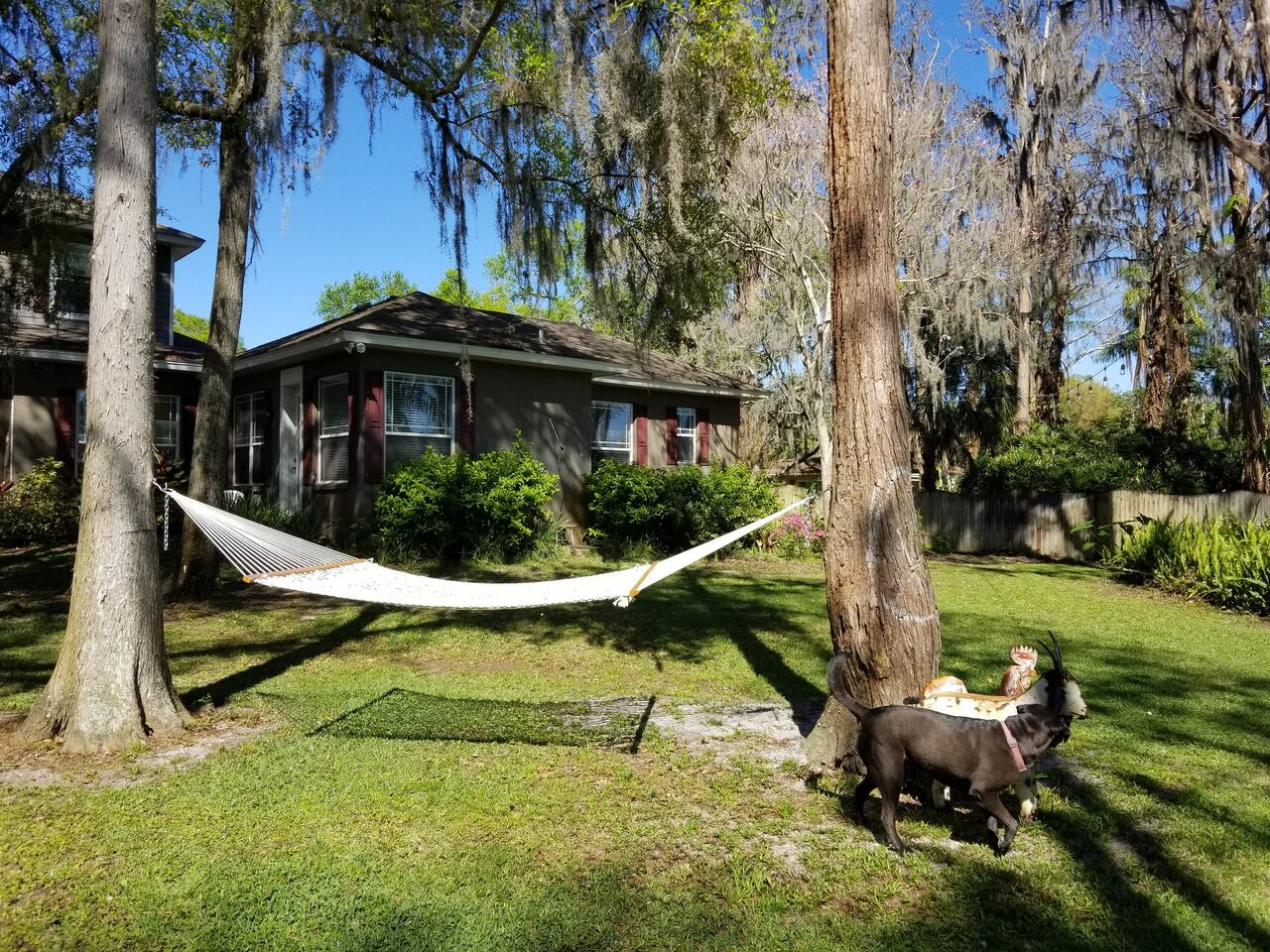 """How cute is your guesthouse!!!  An oasis on the farm""""ette"""" in Odessa."""