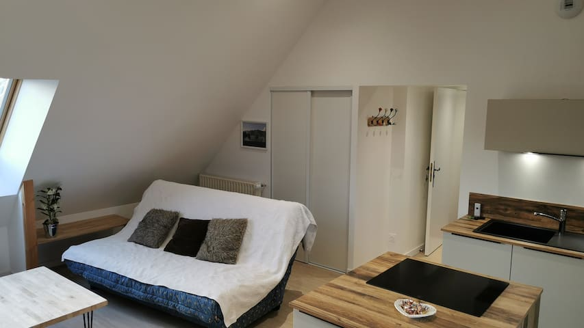 Salon avec canapé lit en 140 + TV