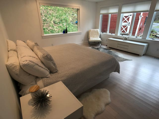 Front bedroom + king bed.