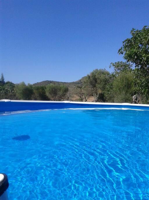 PISCINA  piscina  redonda de 4,60 X 1,20 de altura